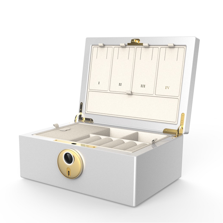 MFB-1200 Biometrics Fingerprint Jewelry Safe Box & Organizer · Fingerprint Jewelry Chest· Fingerprint Jewelry Case · Fingerprint Jewelry Storage & Organization