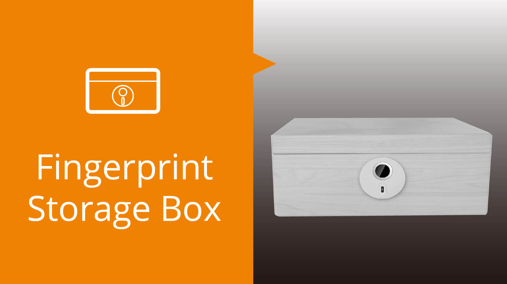 Storage Fingerprint Box