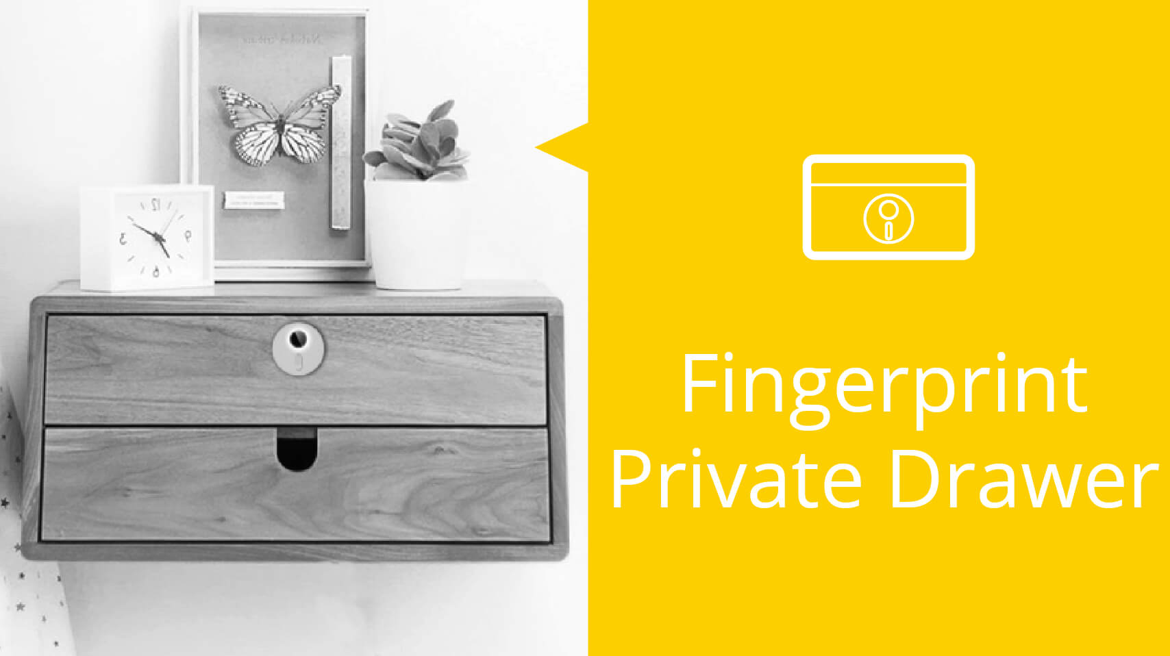 Fingerprint Private Drawer | Midas Touch