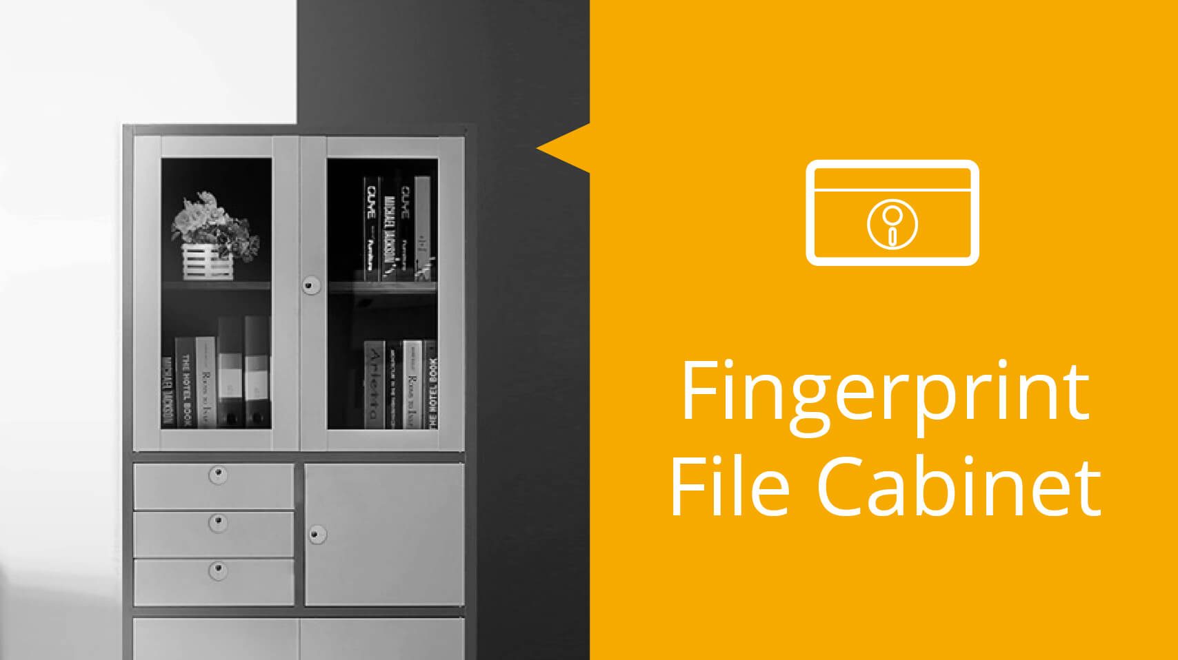 Customization service of fingerprint module for File Cabinet